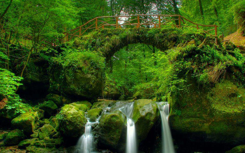 Latest Nature Wallpapers 2013 Hd