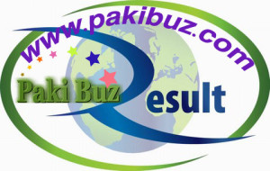 PEC 5th 8th Class Result 2014