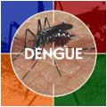 Dengue Fever Symptoms Signs And Treatment