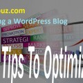 5 Tips for Optimizing a WordPress Blog