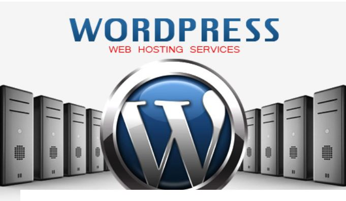 Importance of High Speed Hosting for WordPress Websites Cheap Hosting